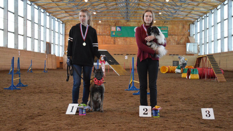 39 собак и их хозяев боролись за Гран-при в турнире по аджилити в Вологде